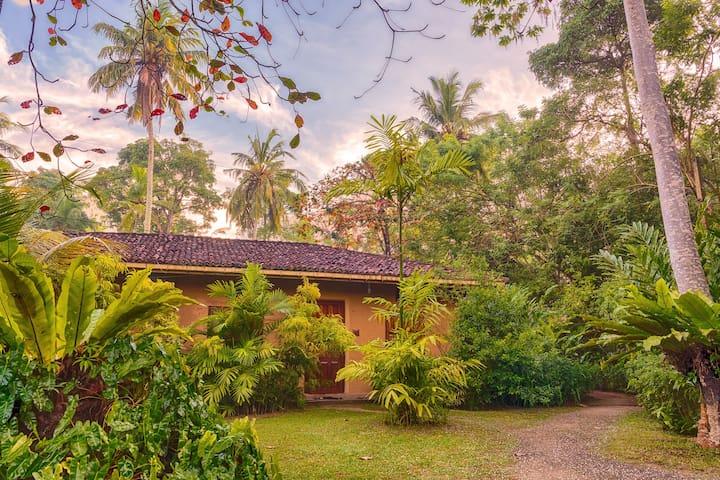 Tisara Villa 1 - A Tranquil Oasis