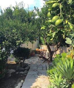chalet nel giardino di  agrumi - Forio