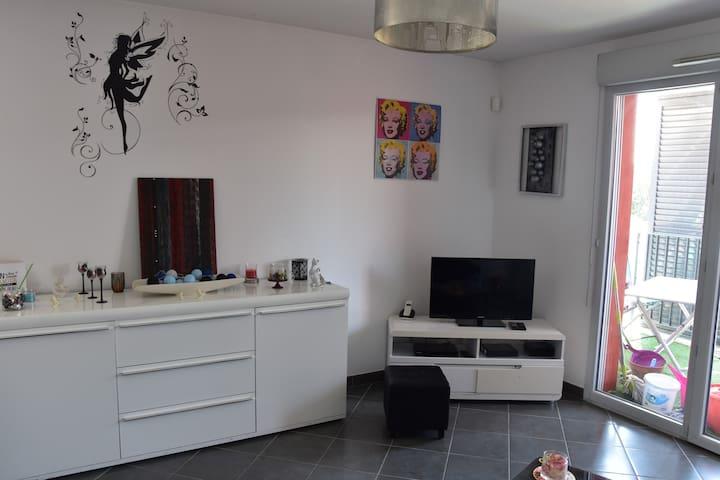 Appartement spacieux zenith / hippodrome