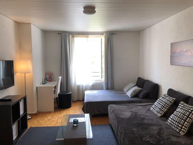 2 room (1BR) flat Zurich City