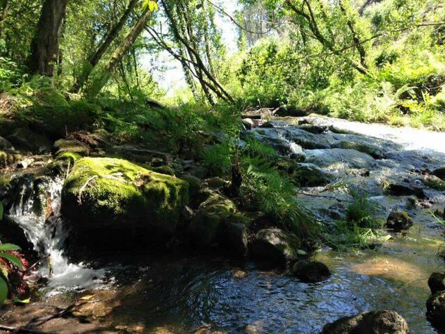 Trovela River Camp - tent spot