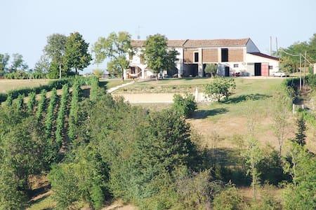 Cascinale nel cuore del Monferrato - Castelletto Merli