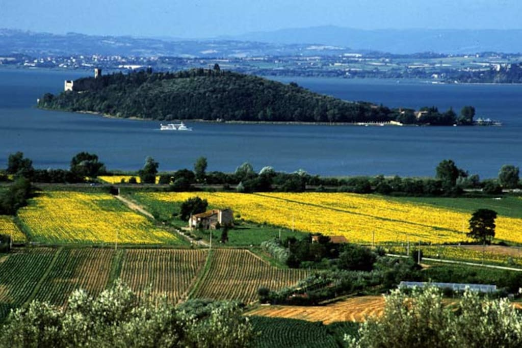 Overlooking Lake Trasimeno, seen from the hills