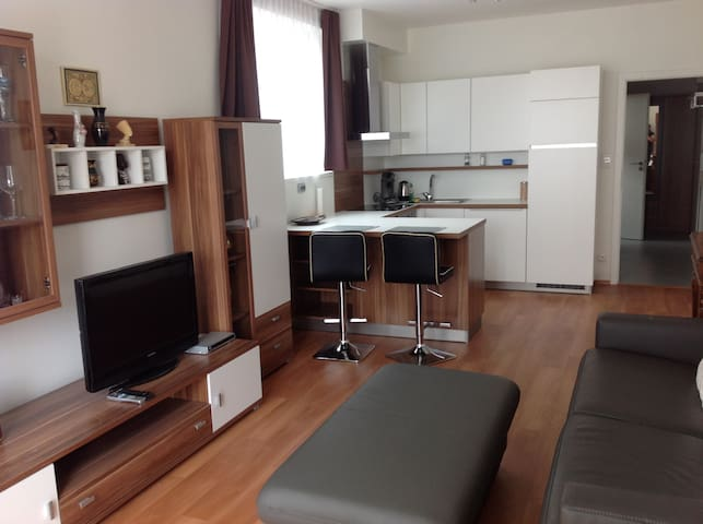 Studio with balcony and garage