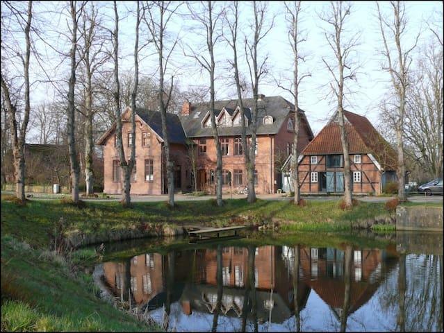 Gemütliche Wohnung in der Alten Schule Barsbek - Barsbek - Apartmen