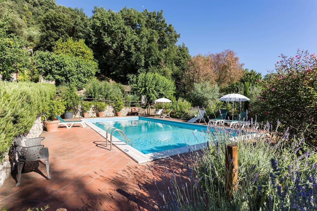 piscina di uso esclusivo