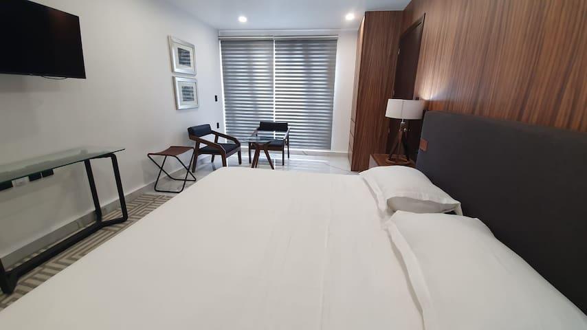 Amplia recámara con cama King size, TV (con cable y Netflix), Aire acondicionado, baño privado, closet, 2 sillones y mesa auxiliar, maletero y burós.