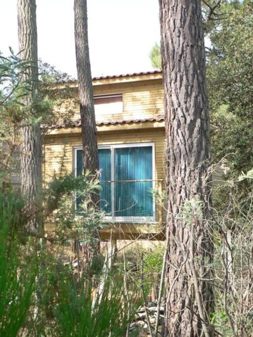 the frontside / le Tiny House vu de face