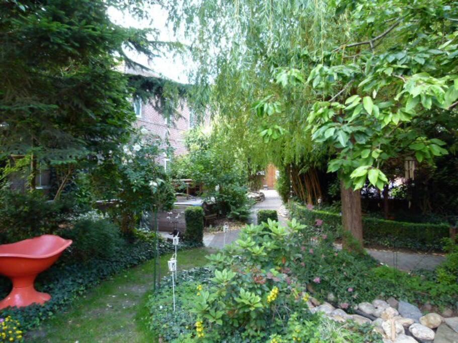une vue de notre jardin