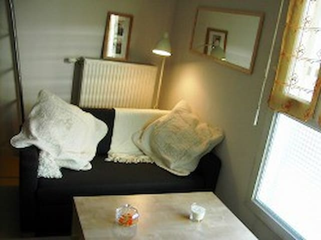 Studio 2/3 per idéal pour visiter Grenoble - Grenoble - Apartment