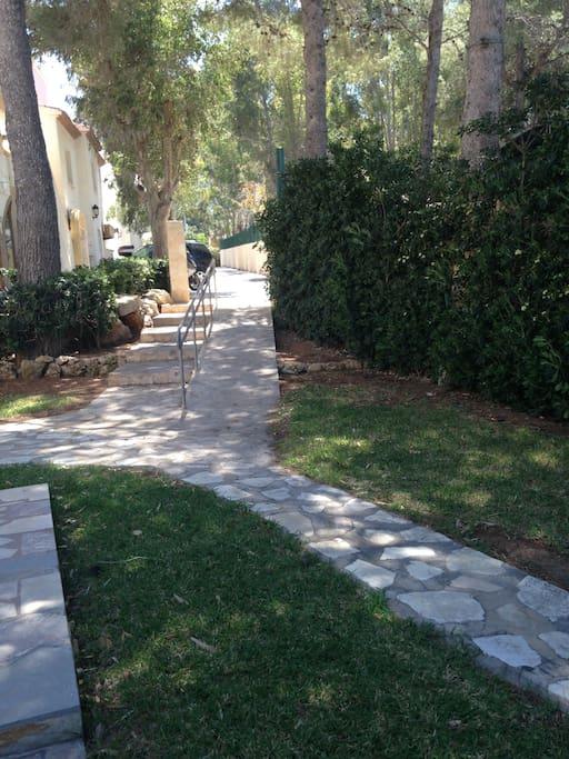 Camino de acceso a la casa por el jardin