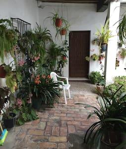 """Casa """"La Paz""""apt. ideal para parejas y niños - Vejer de la Frontera - Talo"""