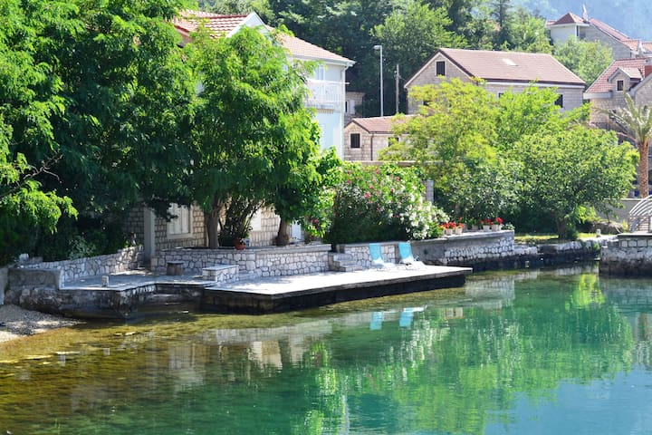 Studio on the coast of Boka bay - Kotor - Maison
