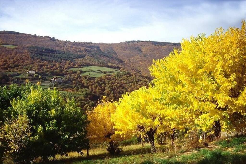 Gabriac en automne