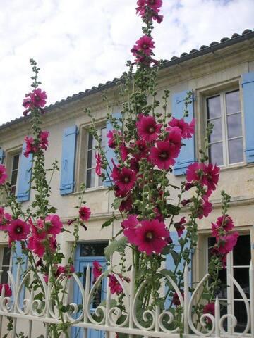 VILLA SOCIANDO - Saint-Seurin-de-Cadourne - Casa