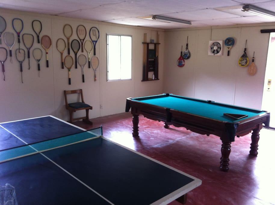 Sala de juegos, mesa de billar y tenis de mesa