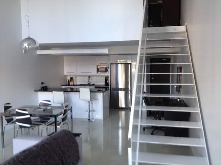 Luxurious Loft in Osborne Village 305 OZ