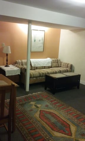 Clean, quiet and private 1 bedroom apartment. - Roanoke