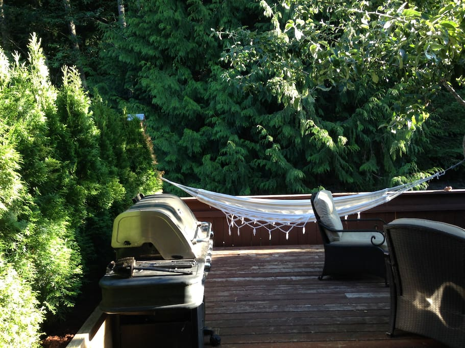 patio with barbq