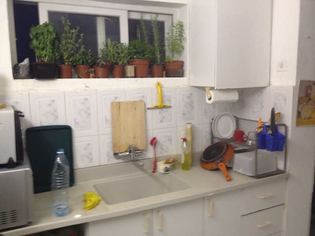 kitchen and little herb garden