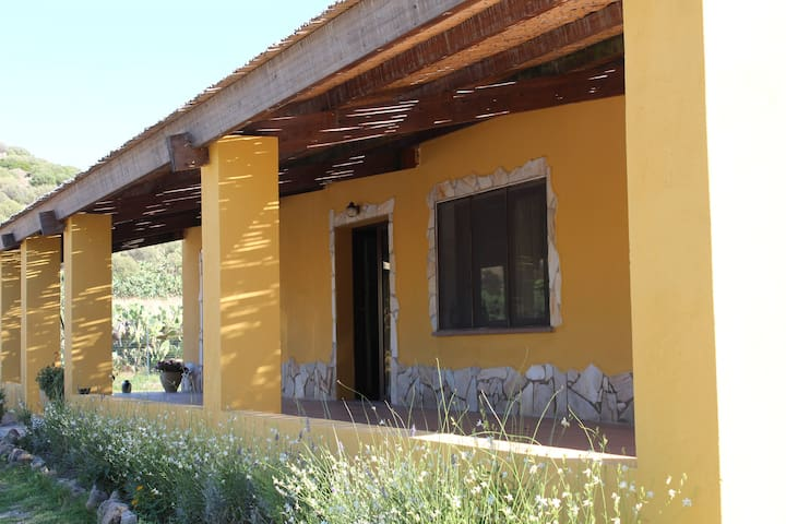 Palmas vecchio vicino a Portopino - San Giovanni Suergiu - Bed & Breakfast