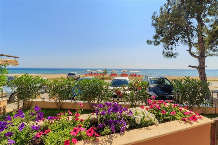 Chalkidiki Dafni Studio-Beachfront Stylish Haven