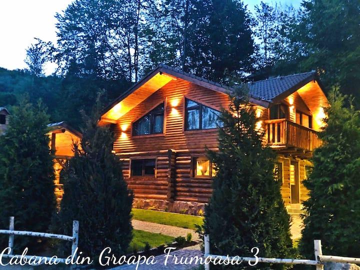 Cabana din Groapa Frumoasa 3