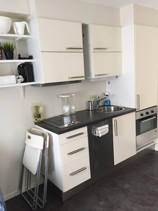 Central Studio Private Bath Kitchen Apartments For Rent
