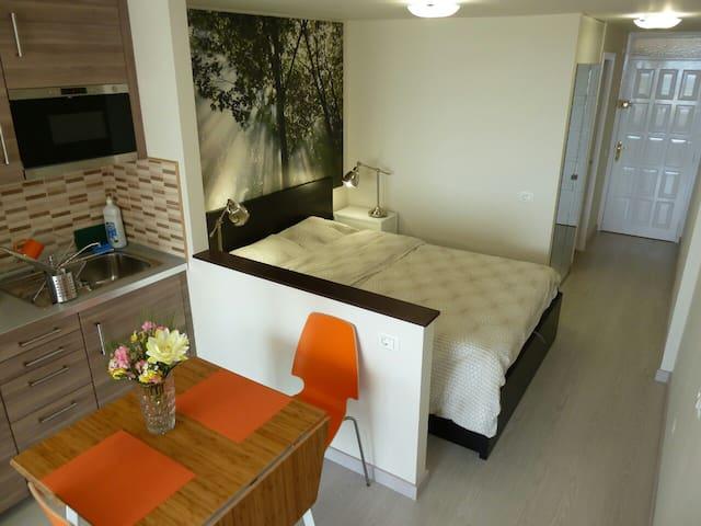 New VIP studio apartment with pool