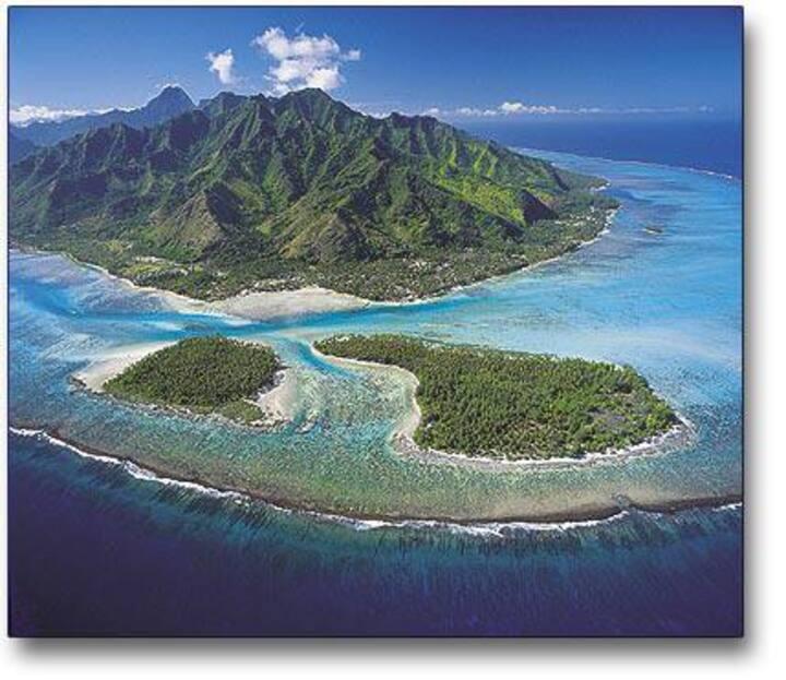 PACIFIQUE à DREAM ISLAND