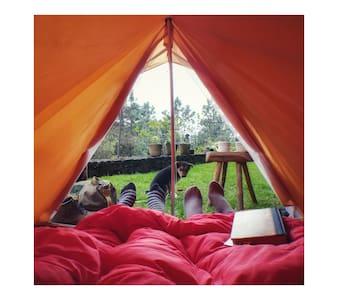 Cabaña / Camping Quinta Malía