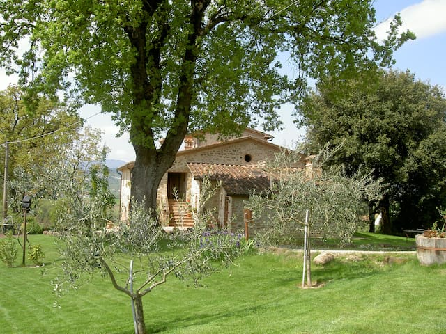 Colonnellihouse-Tramontana - Trestina - Appartement