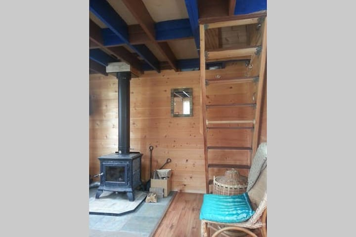 Woodstove and ladder to loft