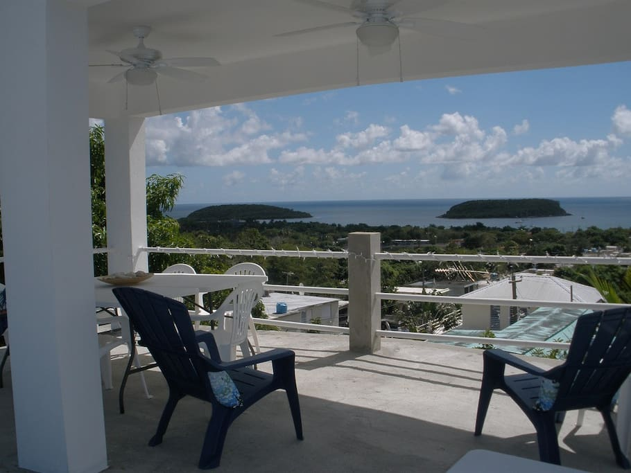 vieques hispanic singles German rieckehoff high school in vieques, puerto rico (pr) serves 291 students in grades 9-12 find data, reviews and news about this school.