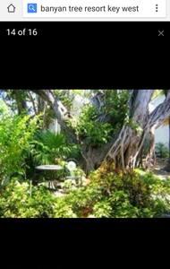 2 BR Condo Banyan Tree, Key West,FL - Ки-Уэст
