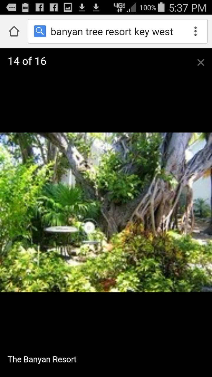2 BR Condo Banyan Tree, Key West,FL