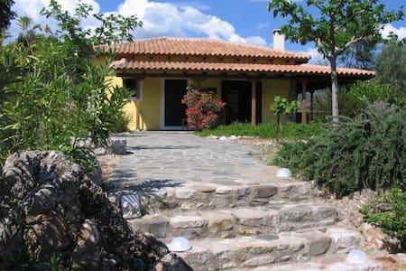 Haus Schildkröte - Aigio