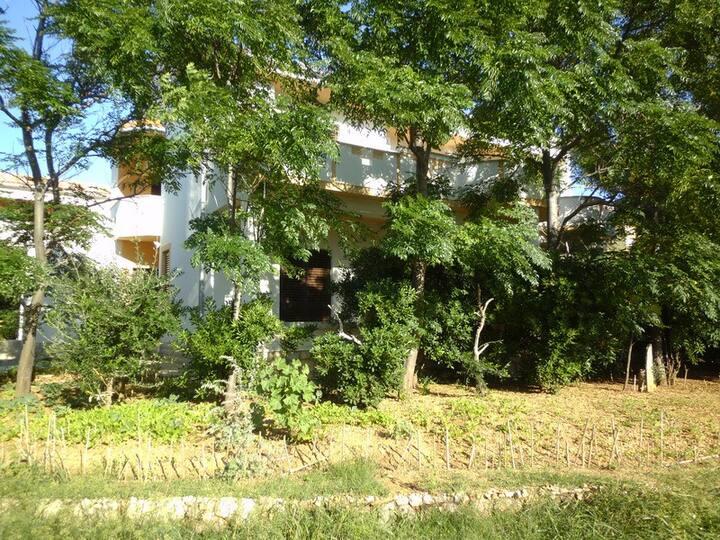 Apartments Krešimir 1