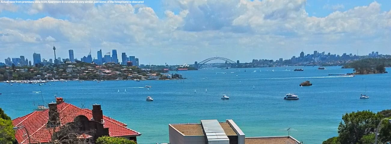 Cute Sunny apartment with beautiful harbour views - Rose Bay