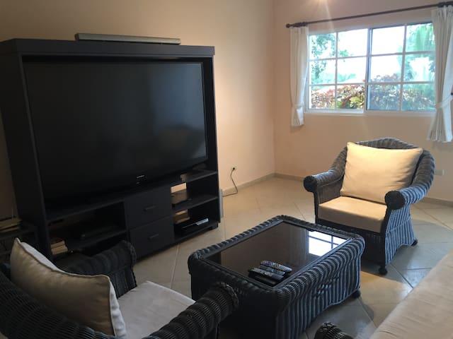 Lower Level Living Room Area