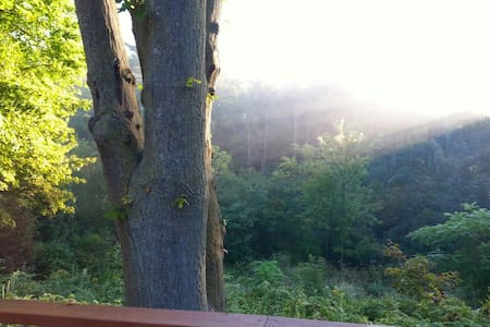 Lrg1 bed beautiful nature in backyard   Ancaster - Hamilton - Casa