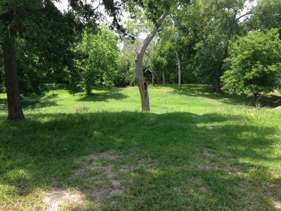 Beautiful open grassy areas for you to enjoy!