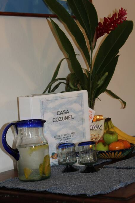 Cozumel Concierge Book for your Reference of the House and the Island.  Information of Restaurants, Beaches and more.