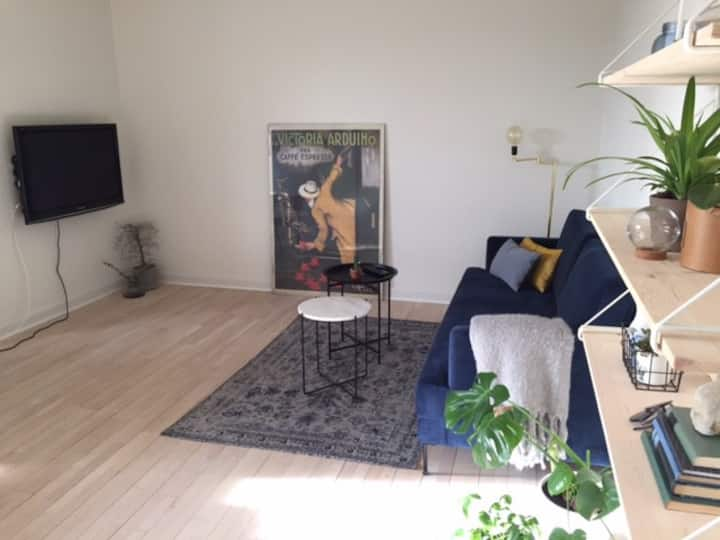 Modern, light and big apartment close to Aalborg