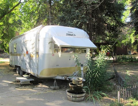 Vintage Silverstreak Trailer