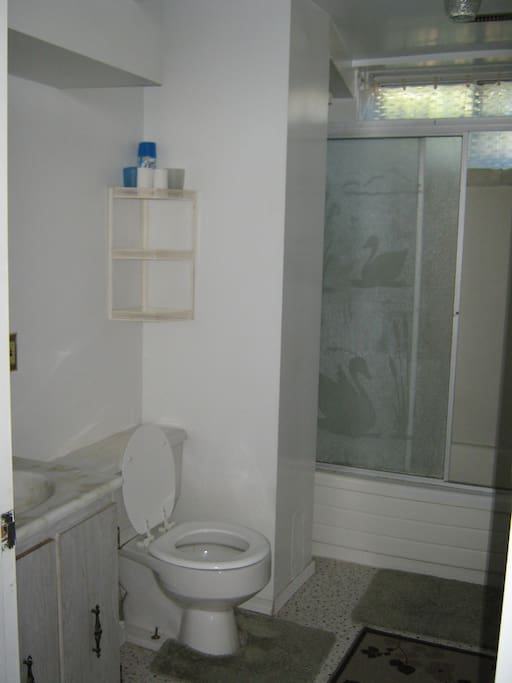 This is the bathroom and shower.