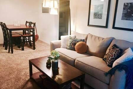Cute-N-Cozy South Austin Apartment - Austin