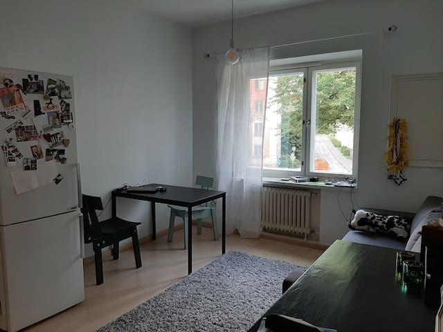 Tidy 1-bedroom apartment with good connections!