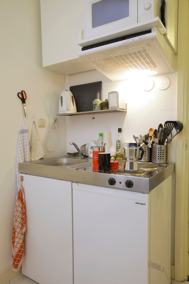 All you need is there: kitchenette, refrigerator and microwave.