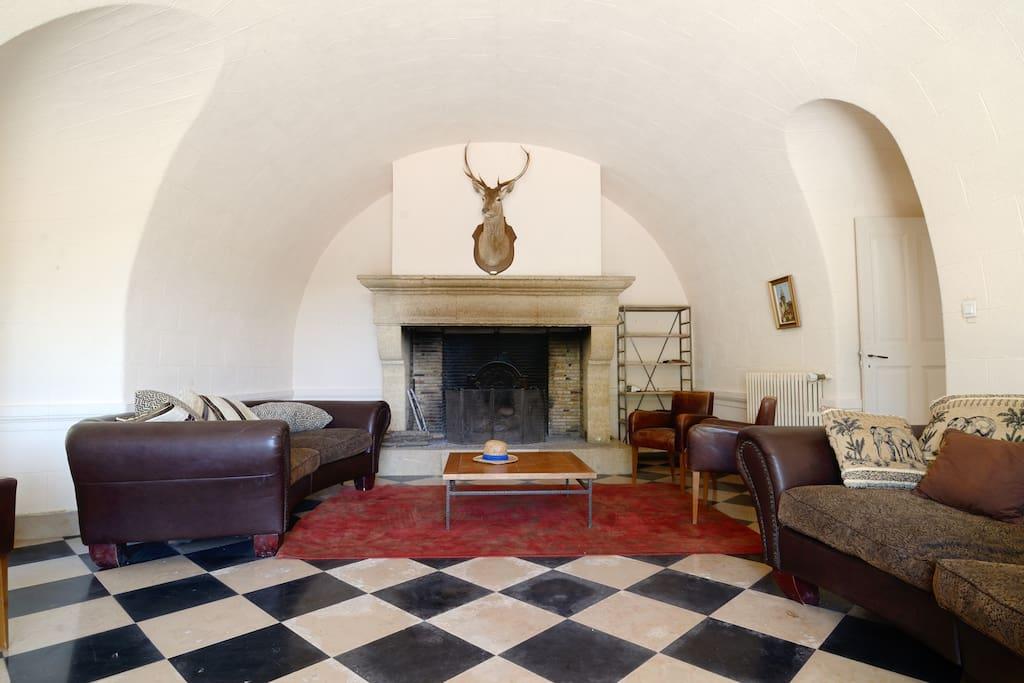 grand salon cheminée majestueuse
